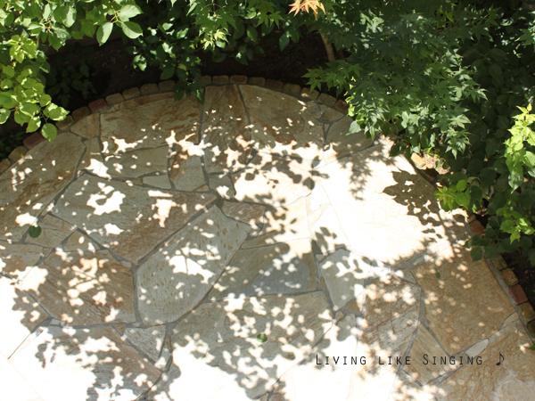 手づくりの庭 * 庭の蚊対策