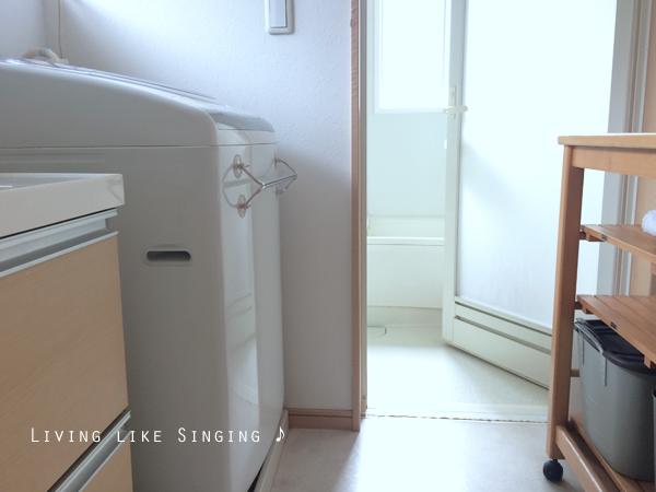 酸素系漂白剤で洗濯機をきれいに保つ